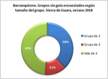 Barranquismo. Grupos sin guía encuestados según tipo de grupo. Sierra de Guara, verano 2018