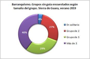 Barranquismo. Grupos sin guía encuestados según tipo de grupo. Sierra de Guara, verano 2019