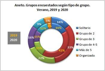 Aneto. Grupos encuestados según tipo de grupo. Verano, 2019-2020